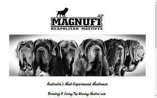 Magnufi Neapolitan Mastiffs
