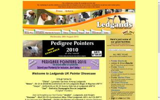 Ledgands English Pointer Showcase