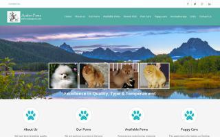 Avalon Pomeranians