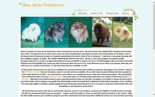 Beau James Pomeranians
