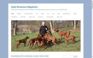 Zejak Rhodesian Ridgebacks