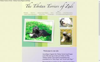Tibetan Terriers of Zodi