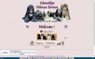 Khatakhyi Tibetan Terriers