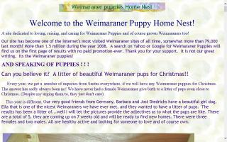 Weimaraner Puppies Home Nest