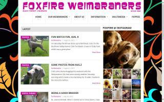 Foxfire Weimaraners