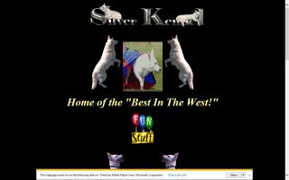 Silver Kennel White German Shepherds