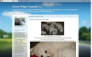 Honey Ridge Puppies
