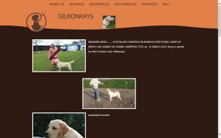 Silronrays
