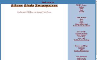 Silver Glade Enterprises