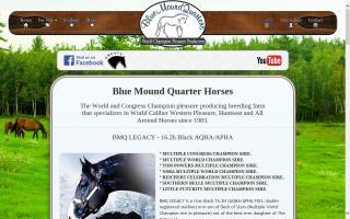Blue Mound Quarter Horses - BMQ Horses