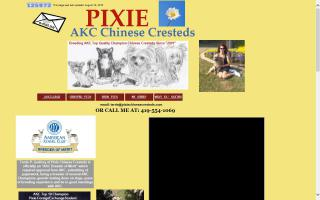 Pixie Chinese Cresteds