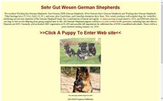 Sehr Gut Wesen German Shepherds