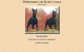 Dobermann Von Ryan's Luxus