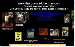 DWCoursey Doberman