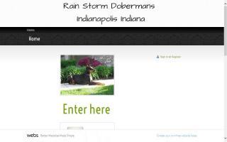 Rain Storm Dobermans
