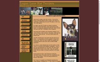 Logan Lane Rat Terriers