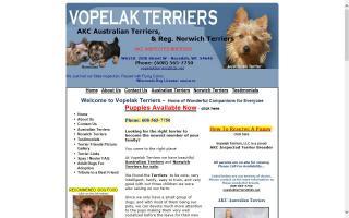 Vopelak Terriers