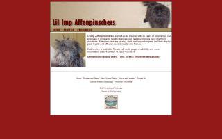 Lil' Imp Affenpinschers