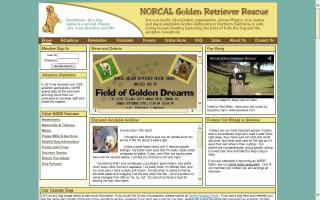 NORCAL Golden Retriever Rescue - NGRR