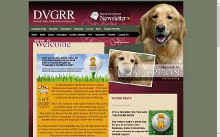 Delaware Valley Golden Retriever Rescue - DVGRR