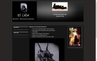 El Lobo Giant Schnauzers