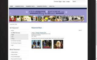 Clearbrook Havanese