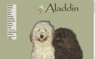 Aladdin Australian Labradoodles