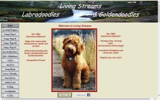Living Streams Labradoodles