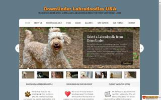 DownUnder Labradoodles, USA