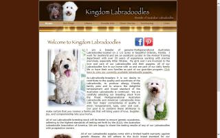 Kingdom Labradoodles