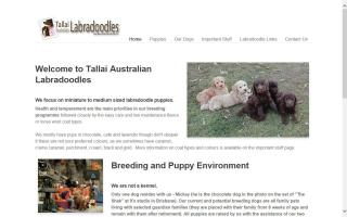 Tallai Australian Labradoodles