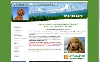 Mountain View Labradoodles