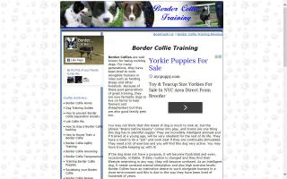 Border Collie Resource