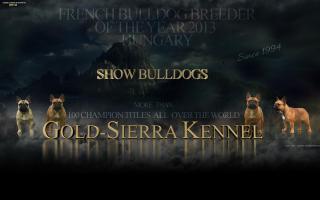 Gold-Sierra Kennel