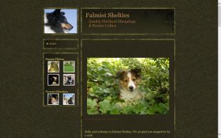 Falmist Shelties