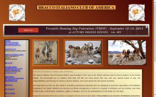 Bracco Italiano Club of America - BICA