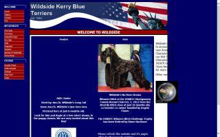 Wildside Kerry Blue Terriers
