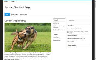 Osthugelland German Shepherd Dogs