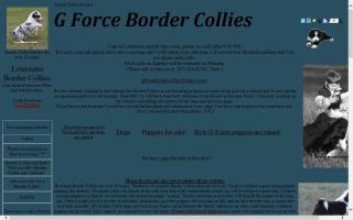 G Force Border Collies