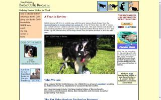New England Border Collie Rescue - NEBCR