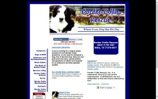 Border Collie Rescue