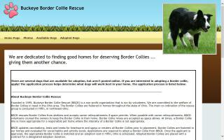Buckeye Border Collie Rescue