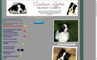 Northern Lights Border Collies