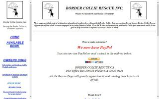 Border Collie Rescue of California - BCR-CA