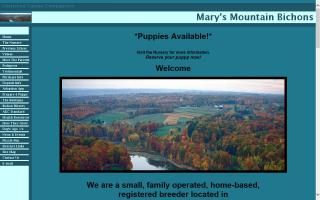 Mary's Mountain Bichons