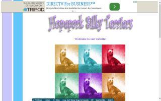 Hopepark Silky Terriers