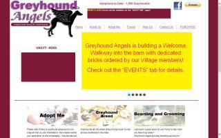 Greyhound Angels Adoption