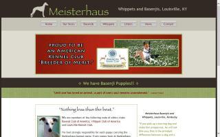 Meisterhaus Basenjis & Whippets