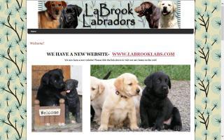 LaBrook Labrador Retrievers