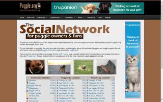 Puggle.org DONE